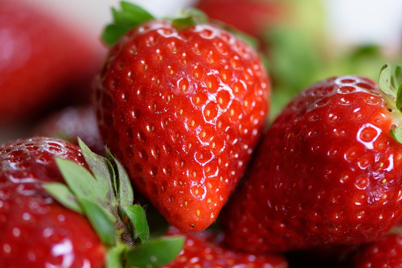 freshness-guaranteed